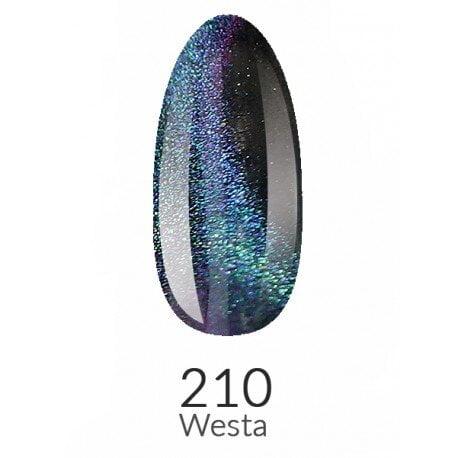 Vasco 210