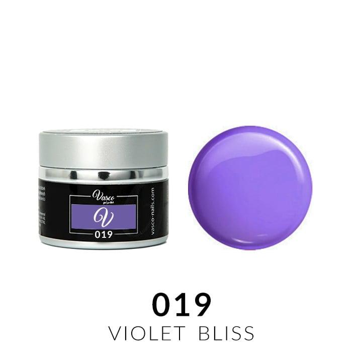 Vasco Paint Gel 019 Violet Bliss 5g